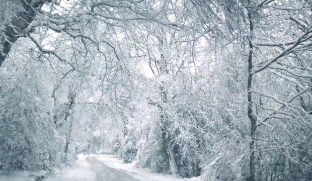 Sněžení. Foto: snímek obrazovky YouTube