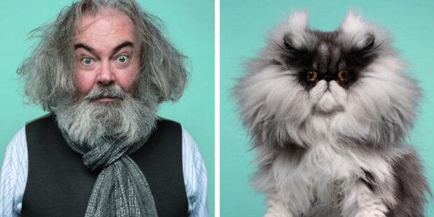 Proč jsou lidé tak podobní svým kočkám: fotograf zachytil majitele se svými kočkami a ukázal jejich podobnost