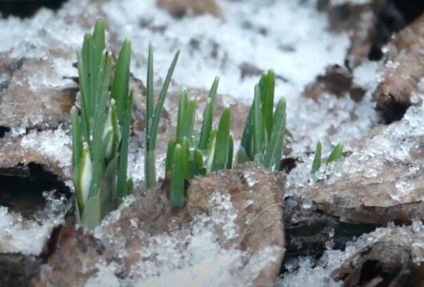 Déšť a místy i sněžení: Počasí o víkendu. ČHMÚ zveřejnil aktuální informace