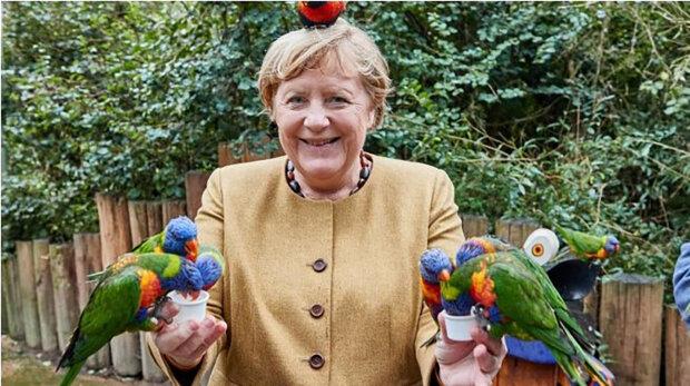 """""""Ne, ne, mám dost papoušků"""": Angela Merkelová tři dny před rezignací navštívila Ptačí park"""