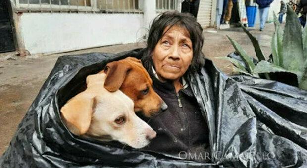 """""""Velké srdce"""": bezdomovkyně odmítla opustit ulici, aby neopustila psy"""