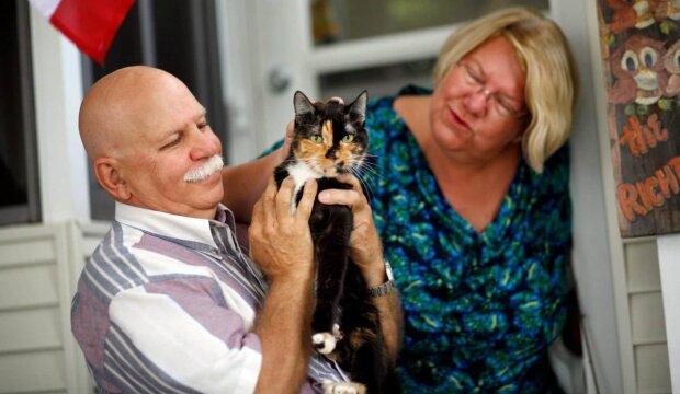 K návratu domů se kočka zdolala více než tři sta dvacet kilometrů