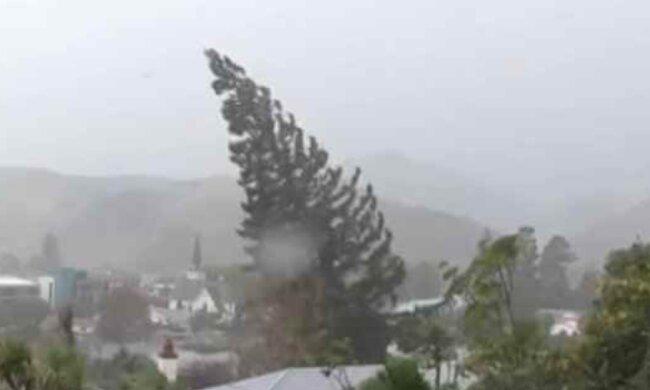 Vítr může lámat stromy a způsobit menší škody na objektech: ČHMÚ varoval před nebezpečím silného větru. Kde platí