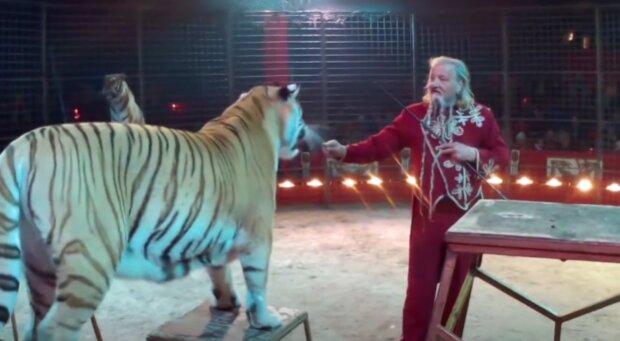 Jaromír Joo s tygřicí. Foto: snímek obrazovky YouTube