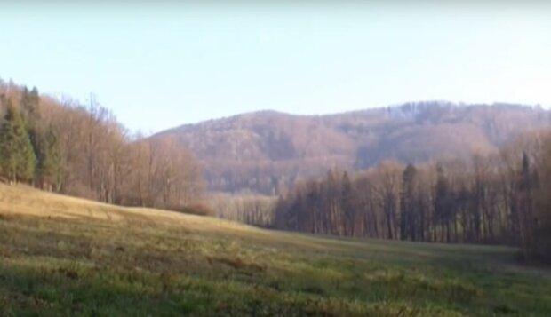 První mrazy v Česku: ČHMÚ prozradil, kdy se začne ochlazovat. Předpověď na víkend