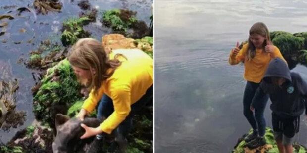 Co jedenáctiletá dívka udělala, aby holýma rukama zachránila uvízlého žraloka