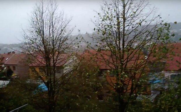 Do Česka míří silný vítr až o rychlosti vichřice: ČHMÚ řekl, jak bude o víkendu. Jakých nejvyšších teplot se dočkáme
