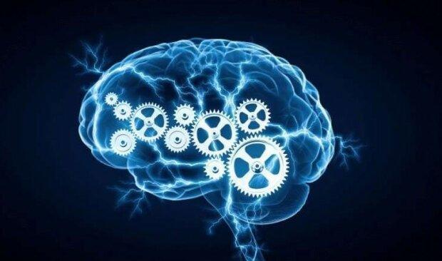 """""""Laskavost vyžaduje mysl"""": proč jsou dobří lidé chytřejší než všichni ostatní"""