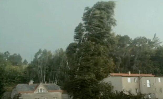 Do Česka míří silný vítr: ČHMÚ zveřejnil aktuální předpověď. Jakých nejvyšších teplot se dočkáme