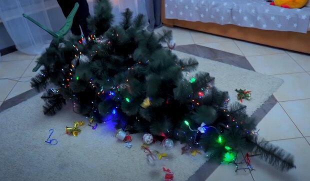 Žena přišla domů a viděla, jak vánoční stromek leží na podlaze: Jak malá a nezkrotná želva smetla stromeček
