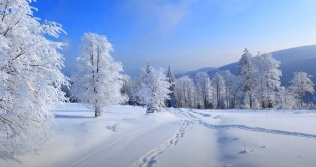 Bílá zima v Česku: meteorologové udělali předpověď na nejbližší dny. Na co se připravit