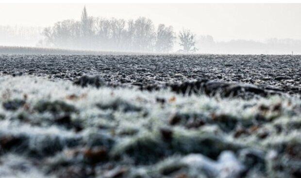 Sněžení, déšť, mrholení: Jaké počasí lze očekávat v následujících dnech