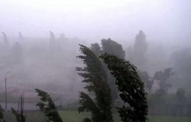 Počasí dnes bude řádit: ČHMÚ vydal výstrahu před silným větrem. Je známo, kde platí
