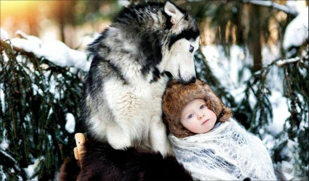 """Vlci zachránili rodící ženu. Díky nim dítě přežilo. """"Vlků jsem se vždy strašně bála, teď je miluji. Určitě se za nimi jednou vrátím a poděkuji jim"""""""