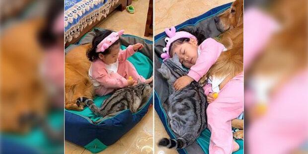 Starostlivá maminka: Holčička si hraje, spí a krmí psa a kočku