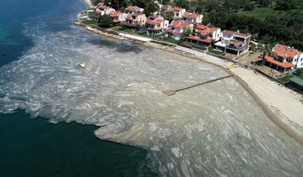 """""""Doufám, že zachráníme naše moře před tímto hlenem"""": Mořský sliz obalil břehy Marmarského moře a ohrožuje Černému"""