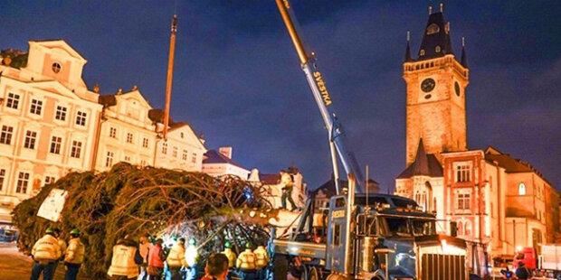 Nejkrásnější akce v Praze na konci roku: na internetu se objevily fotografie hlavního vánočního stromu země