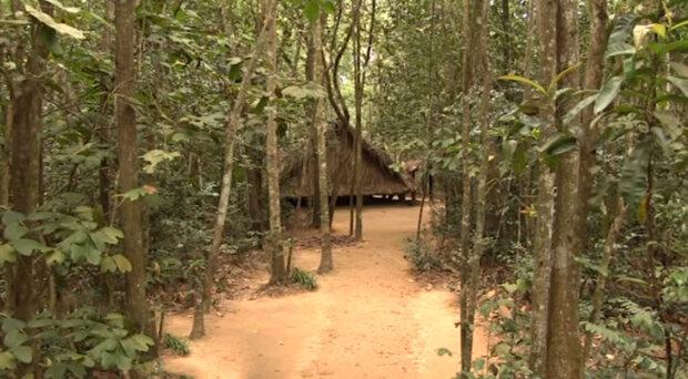 Osmiletá dívka se ztratila v džungli, ale po 20 letech se vrátila domů