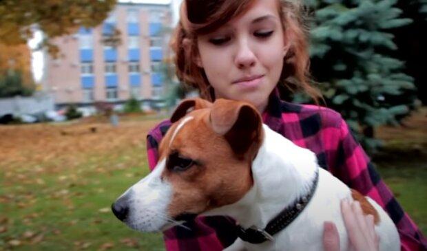 Chovatelé podvedli dívku, místo čistokrevného psa jí prodali voříška: Dívka koupila psa přes inzerát