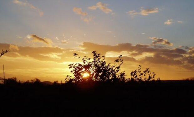 Do Česka se vrátí tropické počasí: Jakých nejvyšších teplot se dočkáme
