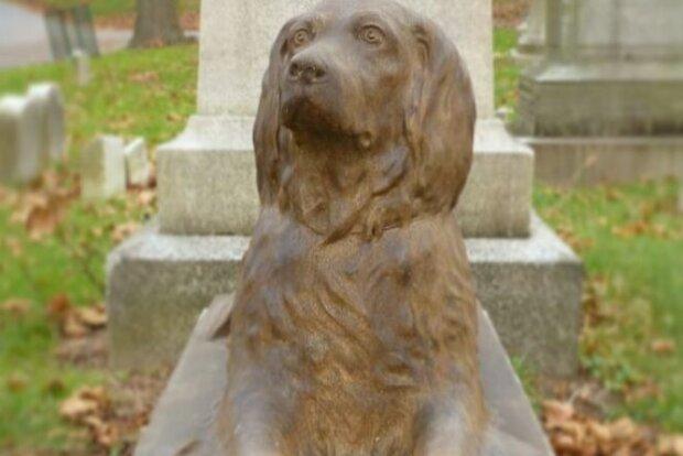 Příběh psa jménem Rex a proč lidé přinášejí větvičky k jeho pomníku o 100 let později