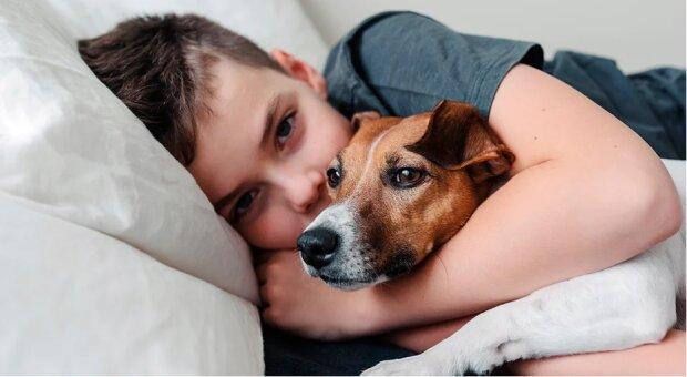 """""""Jsem s tebou"""": malé dítě spěchalo utěšit psa, kterého vyděsila bourka"""