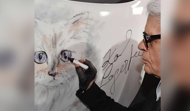Jak žije kočka Karla Lagerfelda, které odkázal 200 milionů dolarů