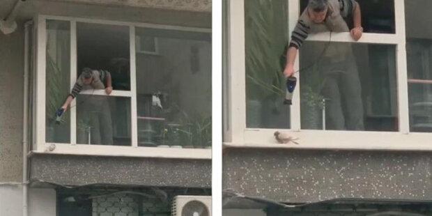 Dobré srdce: muž uviděl zmrzlého holuba a rozhodl se ho zahřát fénem