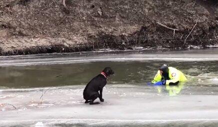 Pes plaval na štípané ledové kry, dokud ho záchranáři nevytáhli