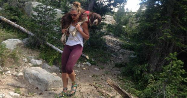 Žena našla psa ve vážném stavu a po dobu šesti hodin ho pronésla na zádech, aby ho zachránila