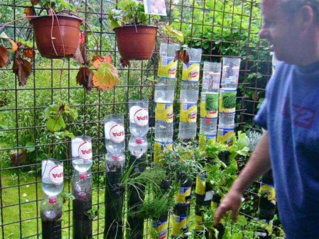 Důchodce zařídil zeleninovou zahradu o velikosti pouze jeden metr čtvereční a ukázal celý postup na fotografiích