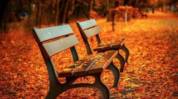 Počasí v duchu pravého podzimu: Meteorologové řekli, co nás čeká o víkendu