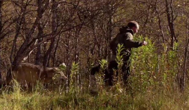 Muž a vlk. Foto: snímek obrazovky YouTube