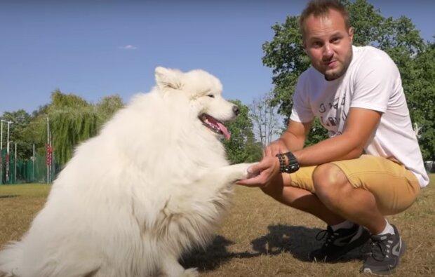 Samojed a muž. Foto: snímek obrazovky YouTube